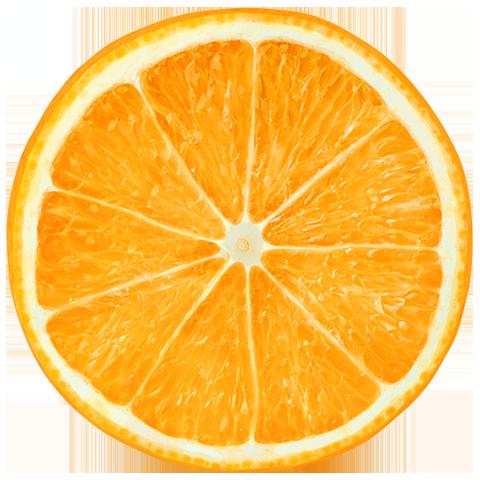 historiy-orange