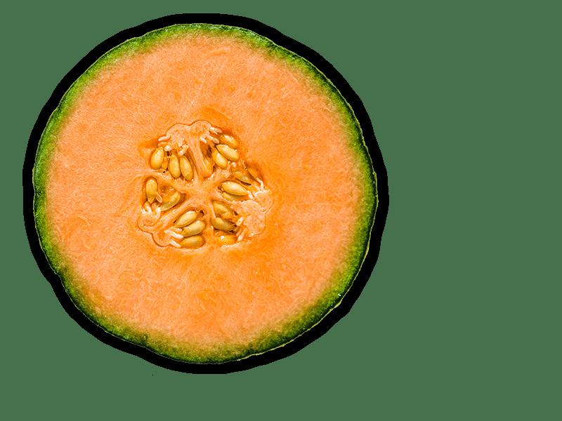 persimmon-object-1-min