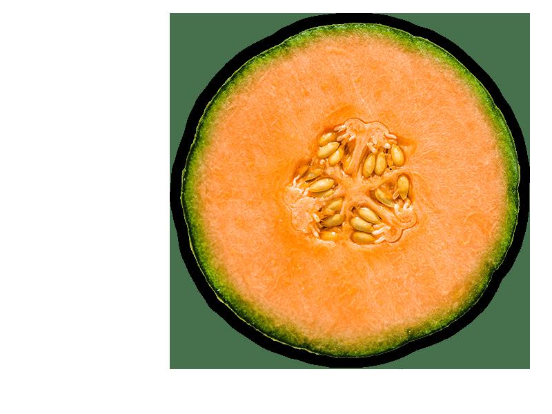 persimmon-object-1-min-en
